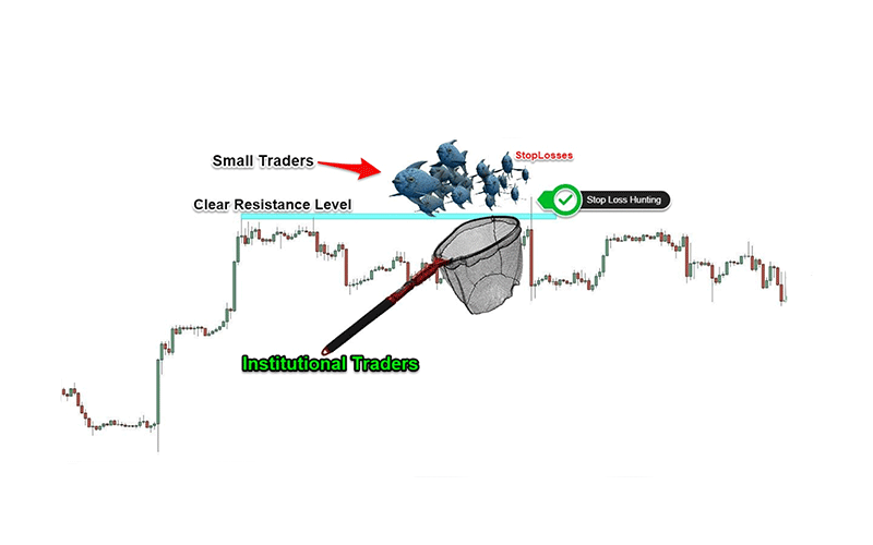 Understanding stop loss hunting in forex