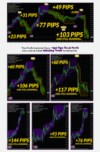 Trading Performance Data