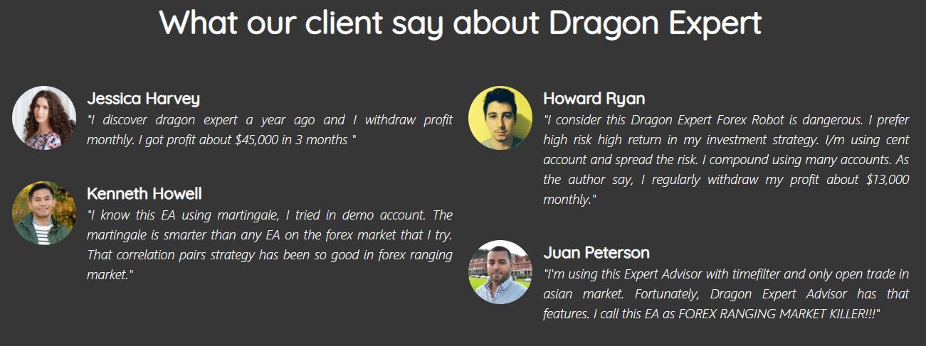 Dragon Expert People feedback