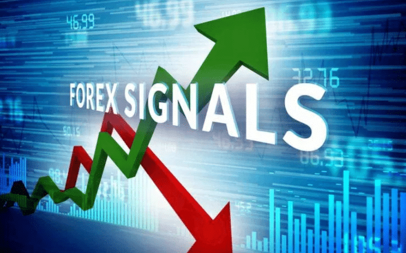 How to Select the Best Forex Signals Provider for Consistent Profits