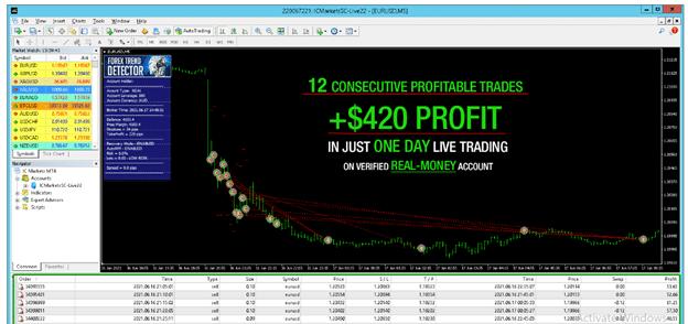Forex Trend Detector - profit