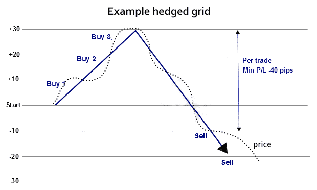 A graph showing a hedged grid.